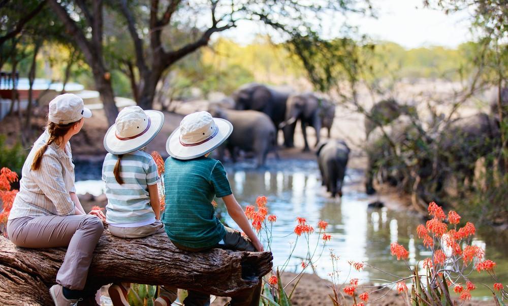 La tua avventura più epica con un safari in Africa